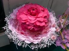 Цветы Экспо